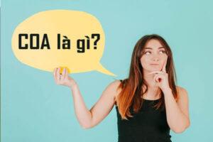 COA là gì? COA có ý nghĩa gì đối với lĩnh vực xuất nhập khẩu?