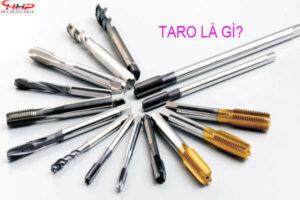 Taro là gì? Mũi taro có ứng dụng gì đối với đời sống chúng ta hiện nay?